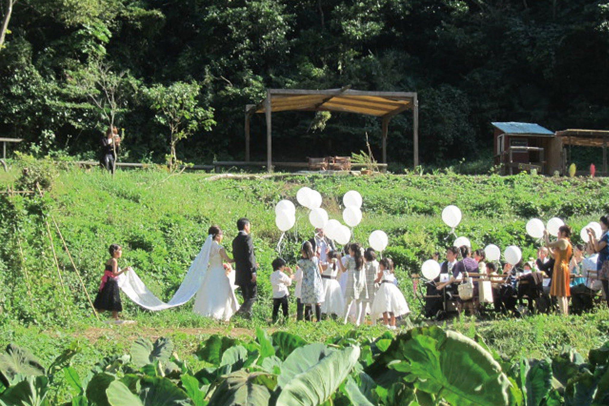 wedding-top1
